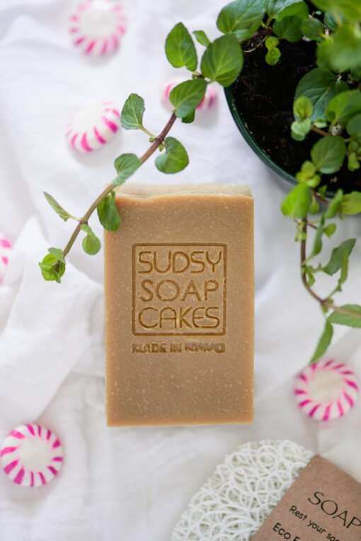 Sudsy Soap Cakes ABI 55 scaled