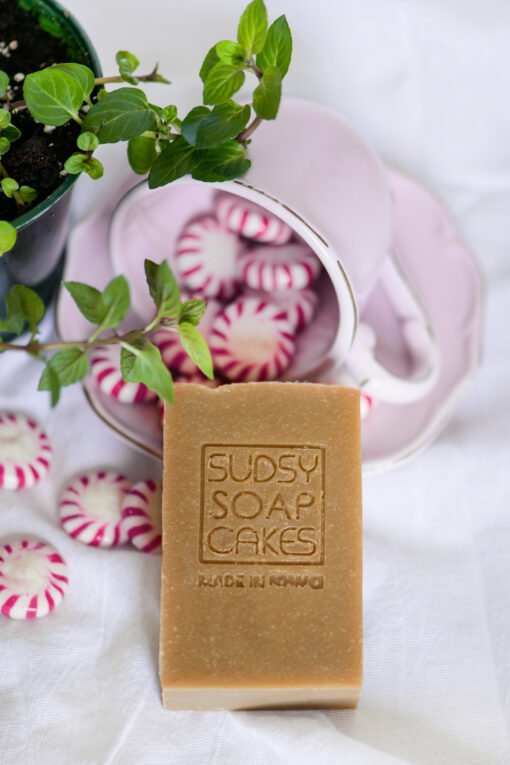 Sudsy Soap Cakes ABI 57 scaled