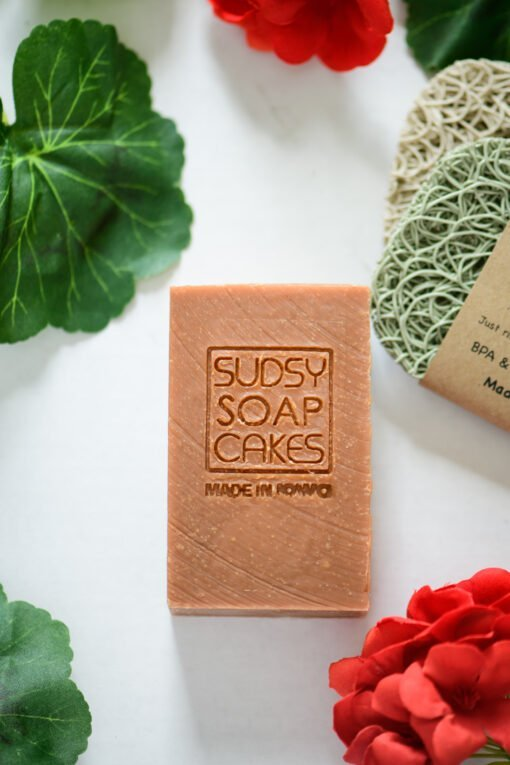 Sudsy Soap Cakes ABI 11 scaled
