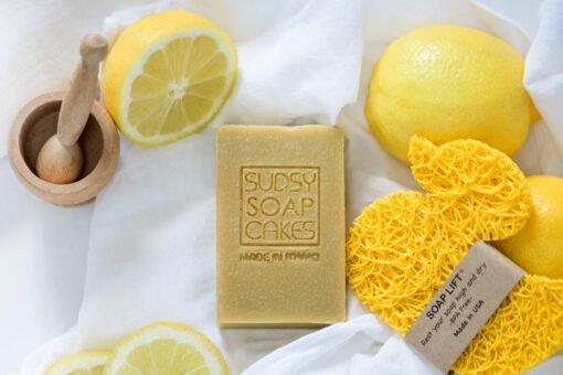 Sudsy Soap Cakes ABI 22 scaled