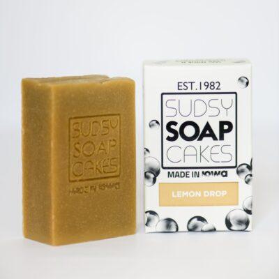 Sudsy Soap Cakes ABI 70 scaled e1592625900208