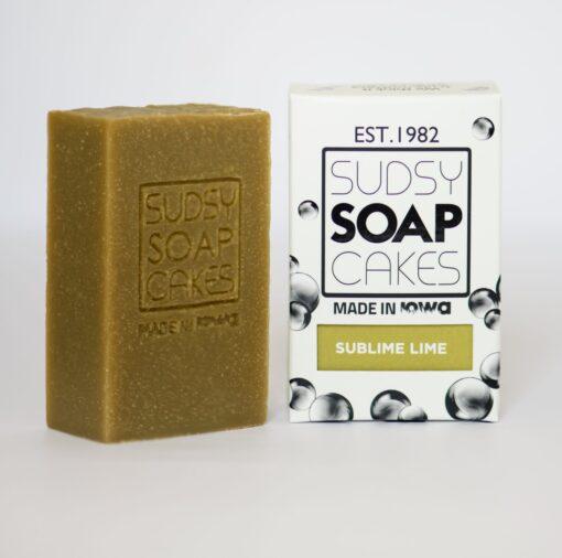 Sudsy Soap Cakes ABI 75 2 scaled e1592626533768