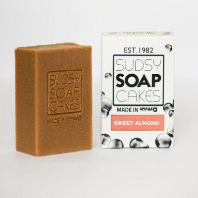 Sudsy Soap Cakes ABI 77 2 scaled e1592626422856