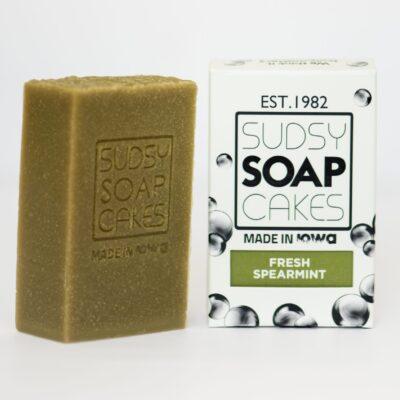 Sudsy Soap Cakes ABI 81 scaled e1592690418935