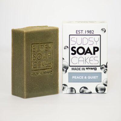 Sudsy Soap Cakes ABI 82 2 scaled e1592690388159