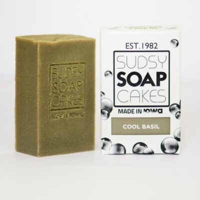 Sudsy Soap Cakes ABI 83 scaled e1592626136260